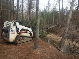 top acworth tree service company with bobcat