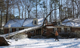 tree on house winter storm