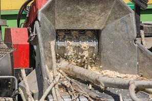 Marietta Tree Removal
